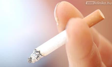 dohányzó küzdelem videó)